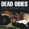 Collation Vol. 1